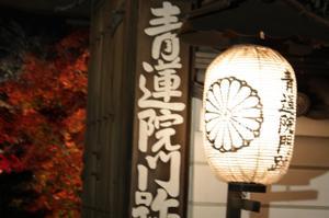 Blog2010kyoto_085