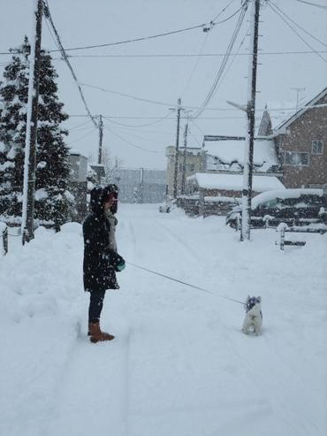 2011_winter_hirosaki_039