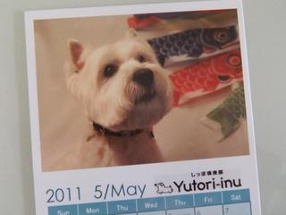 May14th2011_050