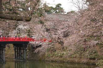Hirosaki2
