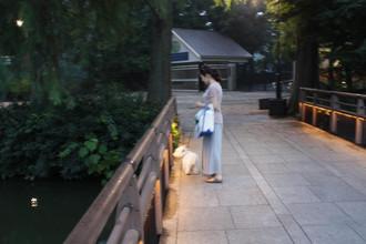 Totoro7_2